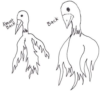 Phoenix Sketch 8
