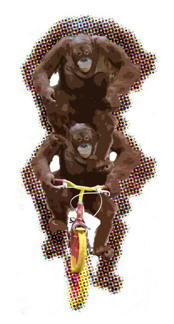 Apes_bike